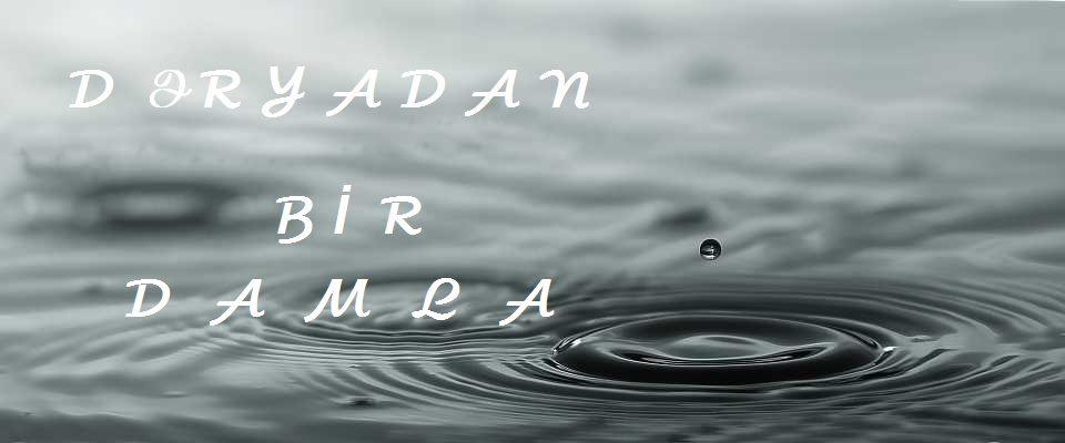 photo of 'admin'